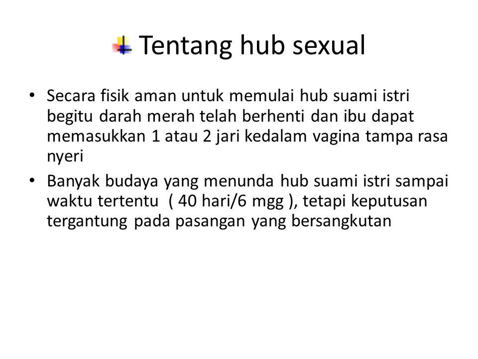 Tentang hub sexual