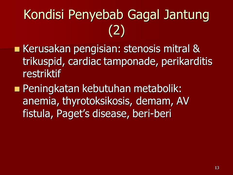 Kondisi Penyebab Gagal Jantung (2)