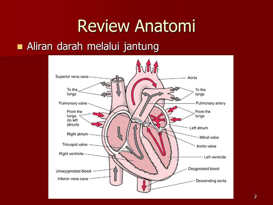 Review Anatomi Aliran darah melalui jantung