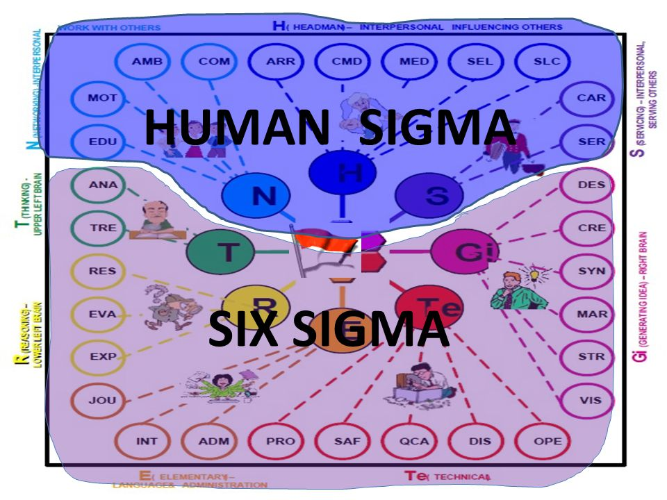 HUMAN SIGMA SIX SIGMA