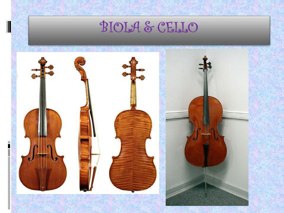 BIOLA & CELLO