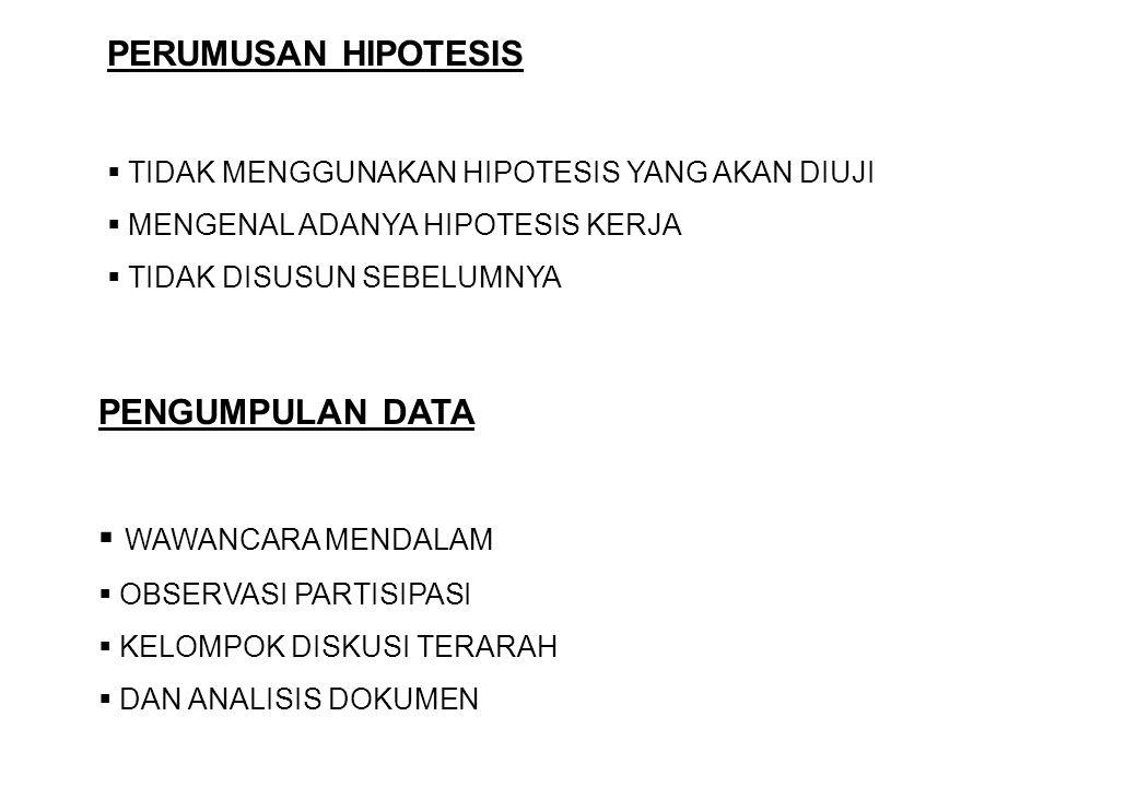 PERUMUSAN HIPOTESIS PENGUMPULAN DATA WAWANCARA MENDALAM