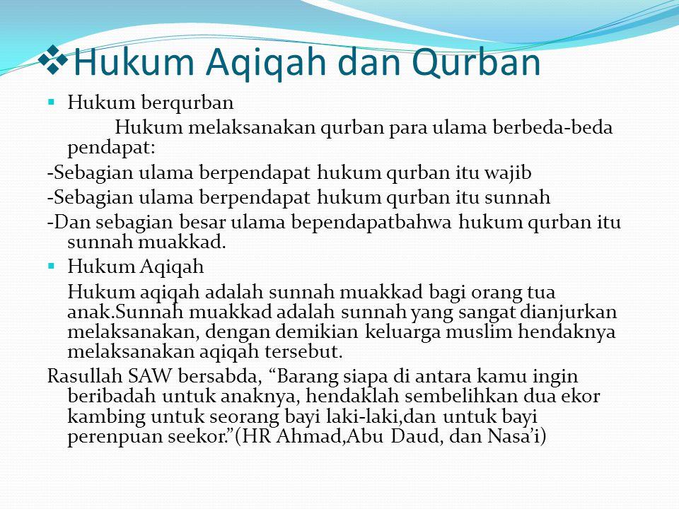 Hukum Aqiqah dan Qurban