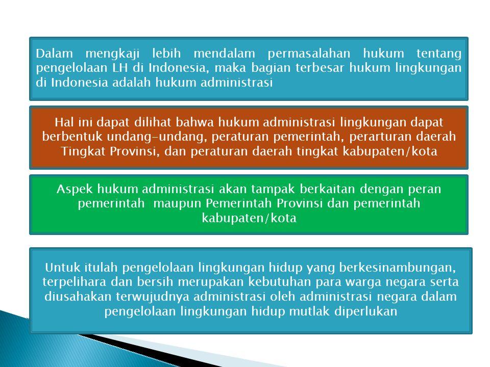 Dalam mengkaji lebih mendalam permasalahan hukum tentang pengelolaan LH di Indonesia, maka bagian terbesar hukum lingkungan di Indonesia adalah hukum administrasi
