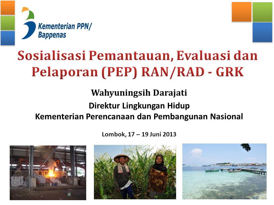 Sosialisasi Pemantauan, Evaluasi dan Pelaporan (PEP) RAN/RAD - GRK