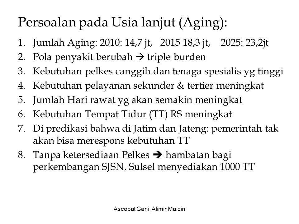 Persoalan pada Usia lanjut (Aging):