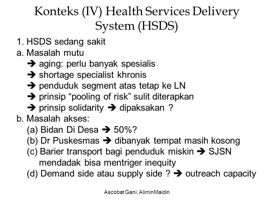 Konteks (IV) Health Services Delivery System (HSDS)