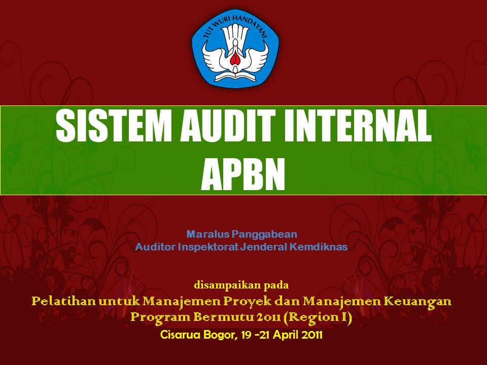 SISTEM AUDIT INTERNAL APBN