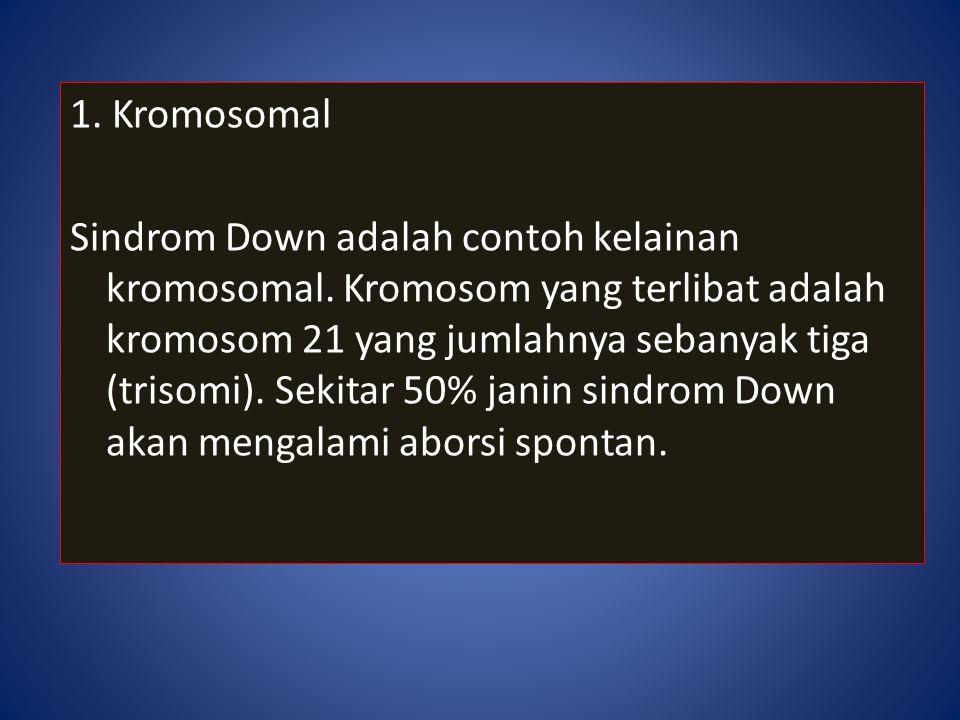 1. Kromosomal