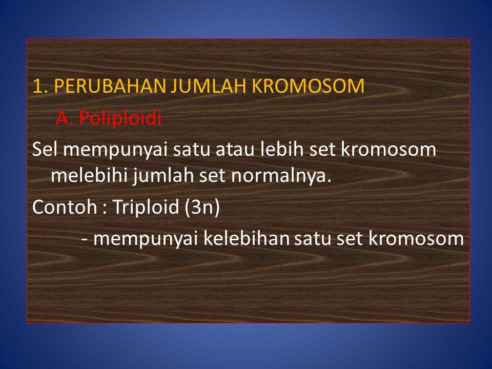 1. PERUBAHAN JUMLAH KROMOSOM A