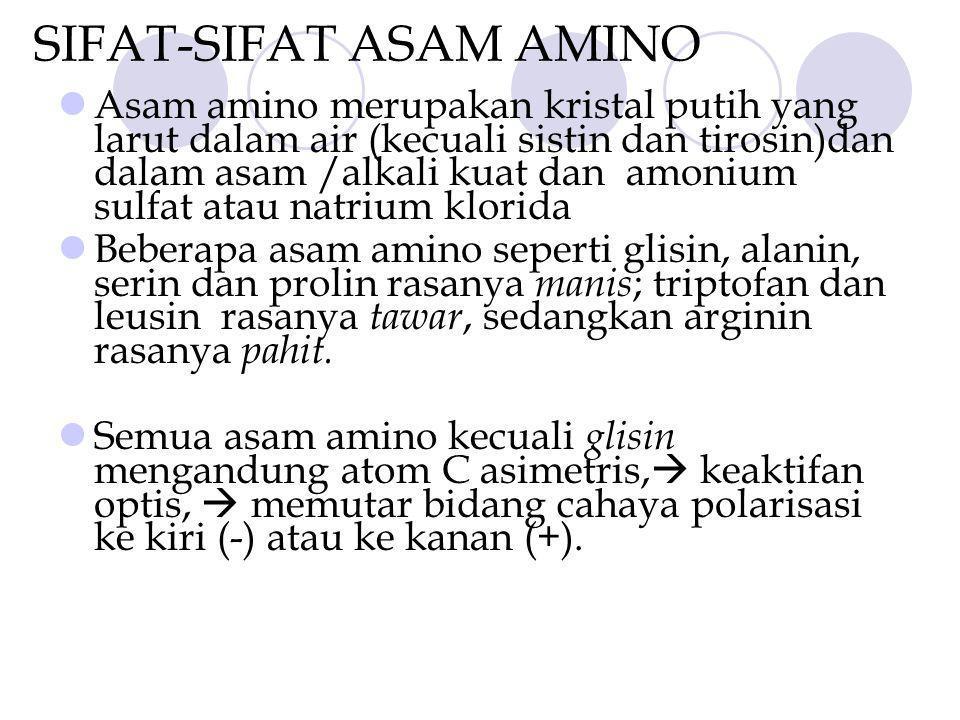 SIFAT-SIFAT ASAM AMINO