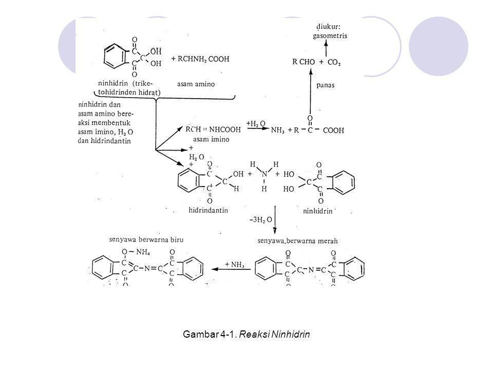 Gambar 4-1. Reaksi Ninhidrin