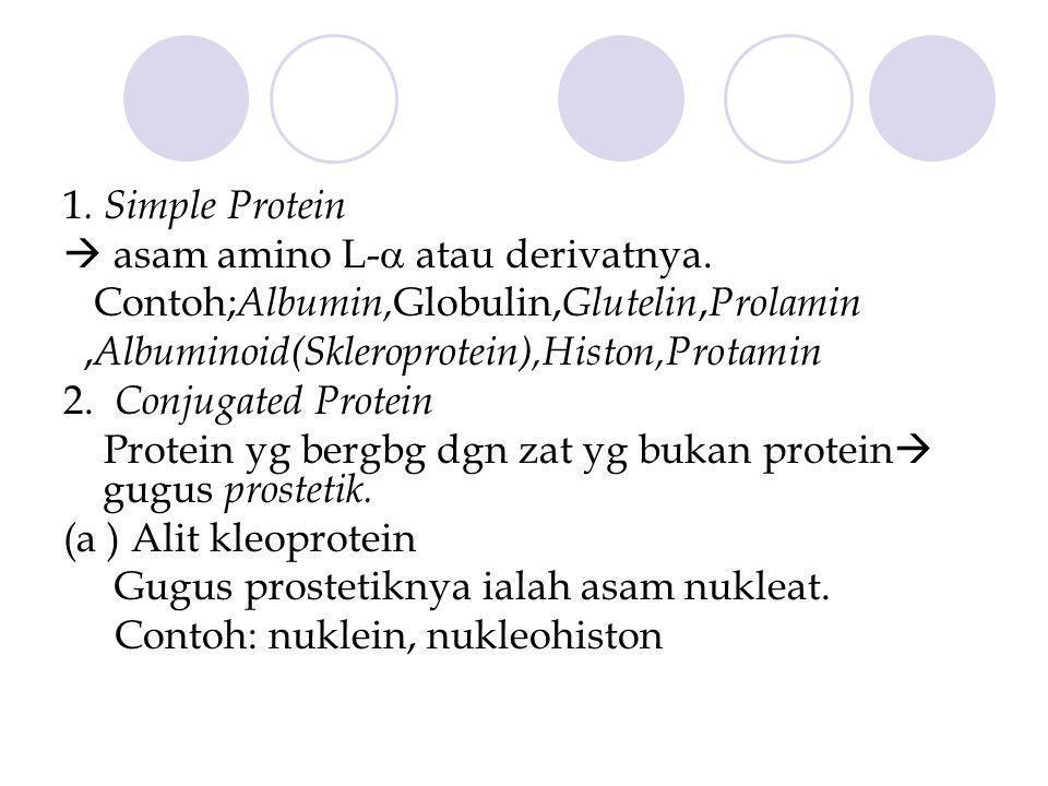 1. Simple Protein  asam amino L- atau derivatnya. Contoh;Albumin,Globulin,Glutelin,Prolamin. ,Albuminoid(Skleroprotein),Histon,Protamin.