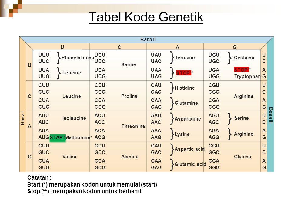 Tabel Kode Genetik } Catatan :