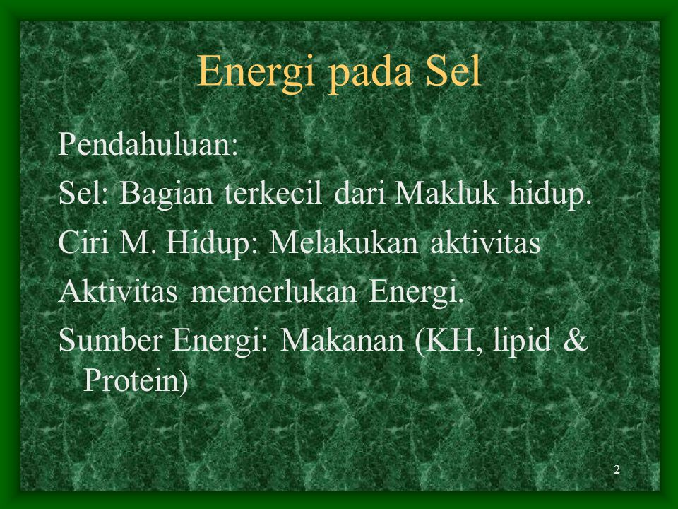Energi pada Sel Pendahuluan: Sel: Bagian terkecil dari Makluk hidup.