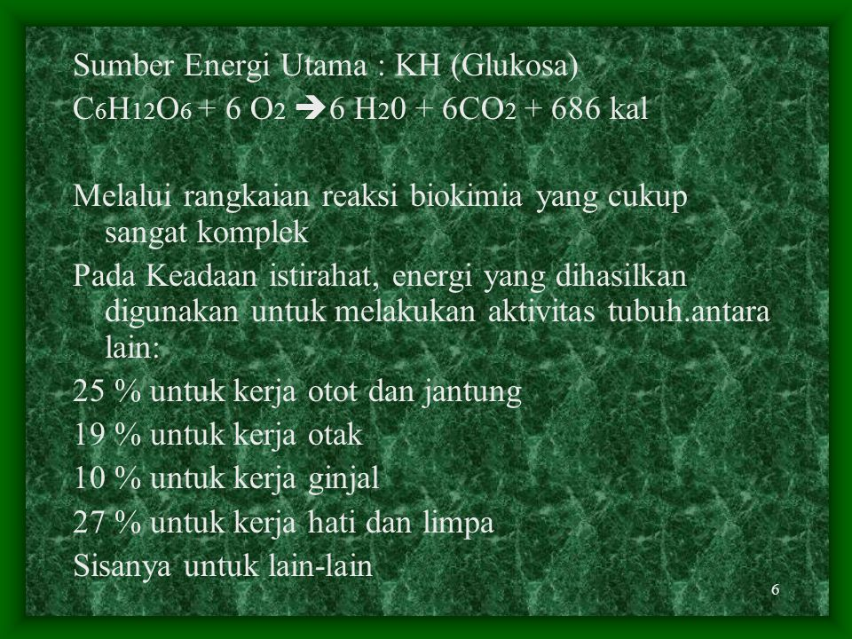 Sumber Energi Utama : KH (Glukosa)