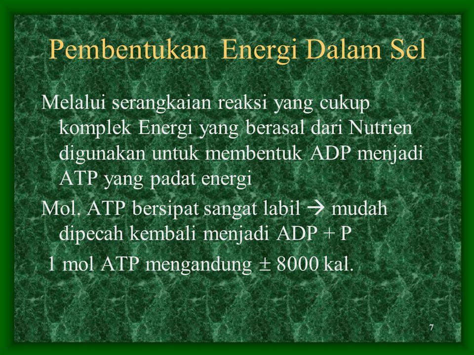 Pembentukan Energi Dalam Sel