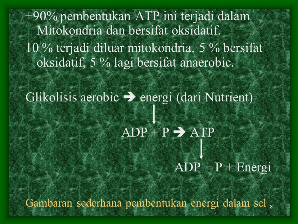 Glikolisis aerobic  energi (dari Nutrient) ADP + P  ATP
