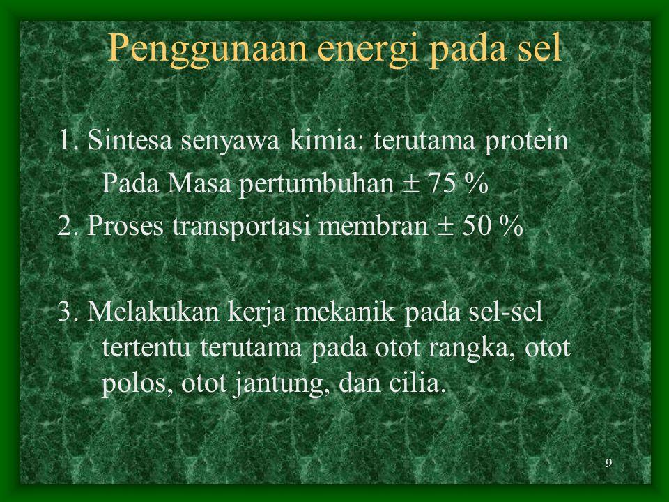 Penggunaan energi pada sel