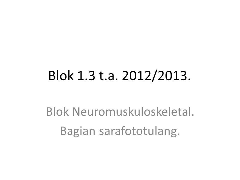 Blok Neuromuskuloskeletal. Bagian sarafototulang.