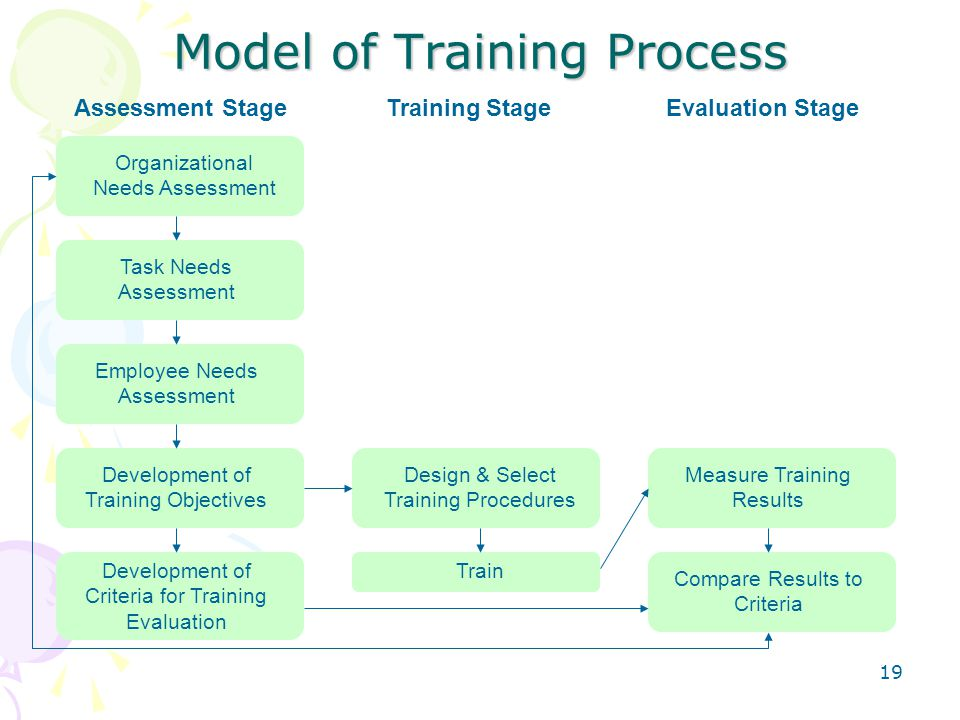 Model of Training Process