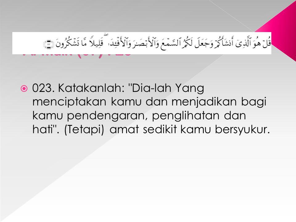Al-Mulk (67) : 23