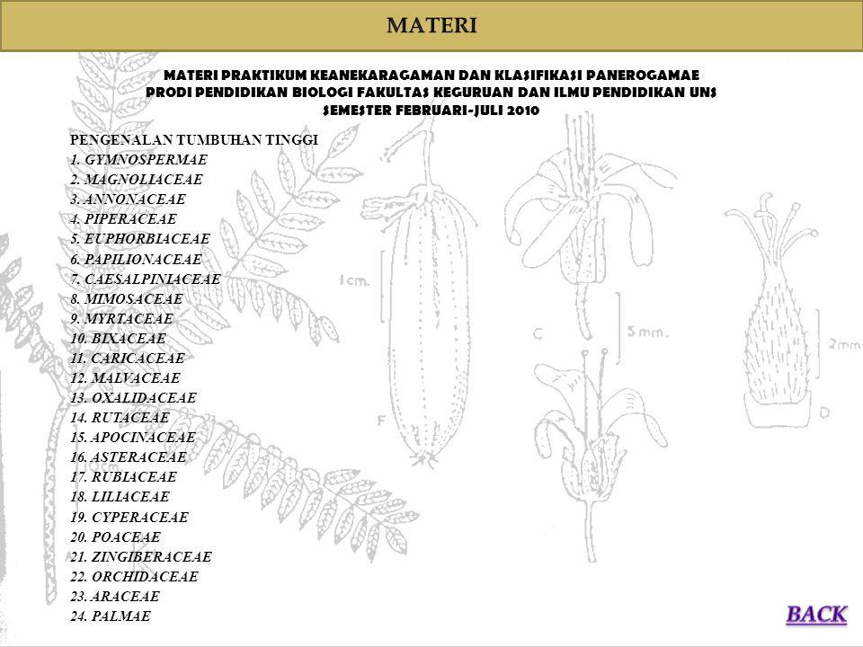 MATERI MATERI PRAKTIKUM KEANEKARAGAMAN DAN KLASIFIKASI PANEROGAMAE. PRODI PENDIDIKAN BIOLOGI FAKULTAS KEGURUAN DAN ILMU PENDIDIKAN UNS.