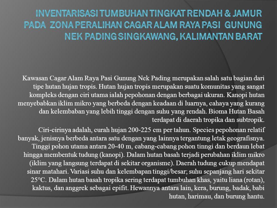 Inventarisasi Tumbuhan Tingkat Rendah & Jamur pada Zona Peralihan Cagar Alam Raya Pasi Gunung Nek Pading Singkawang, Kalimantan Barat