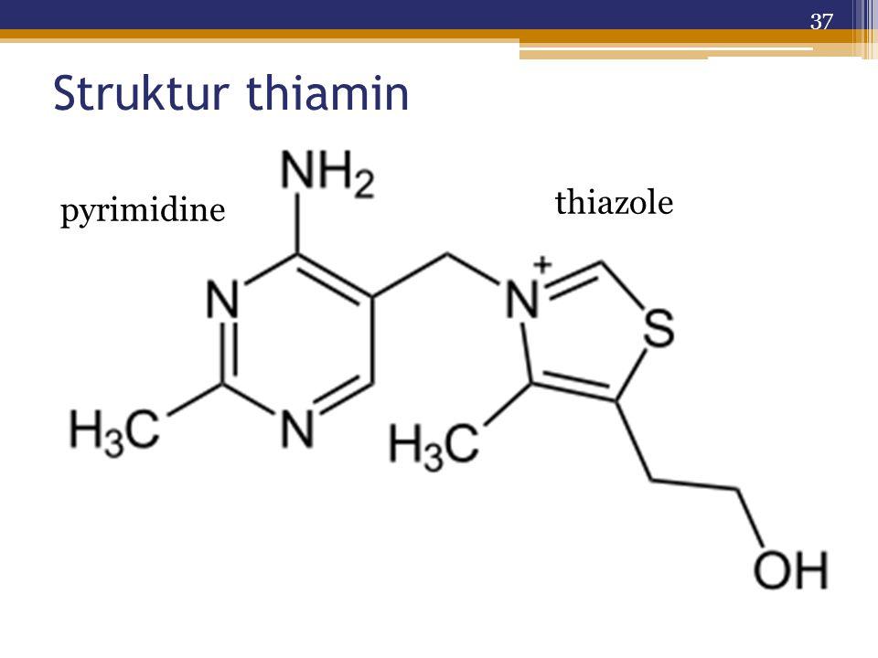Struktur thiamin thiazole pyrimidine