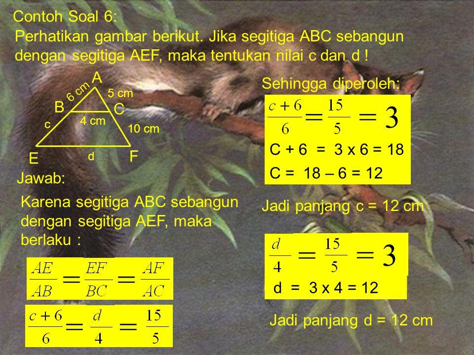 Contoh Soal 6: Perhatikan gambar berikut. Jika segitiga ABC sebangun dengan segitiga AEF, maka tentukan nilai c dan d !