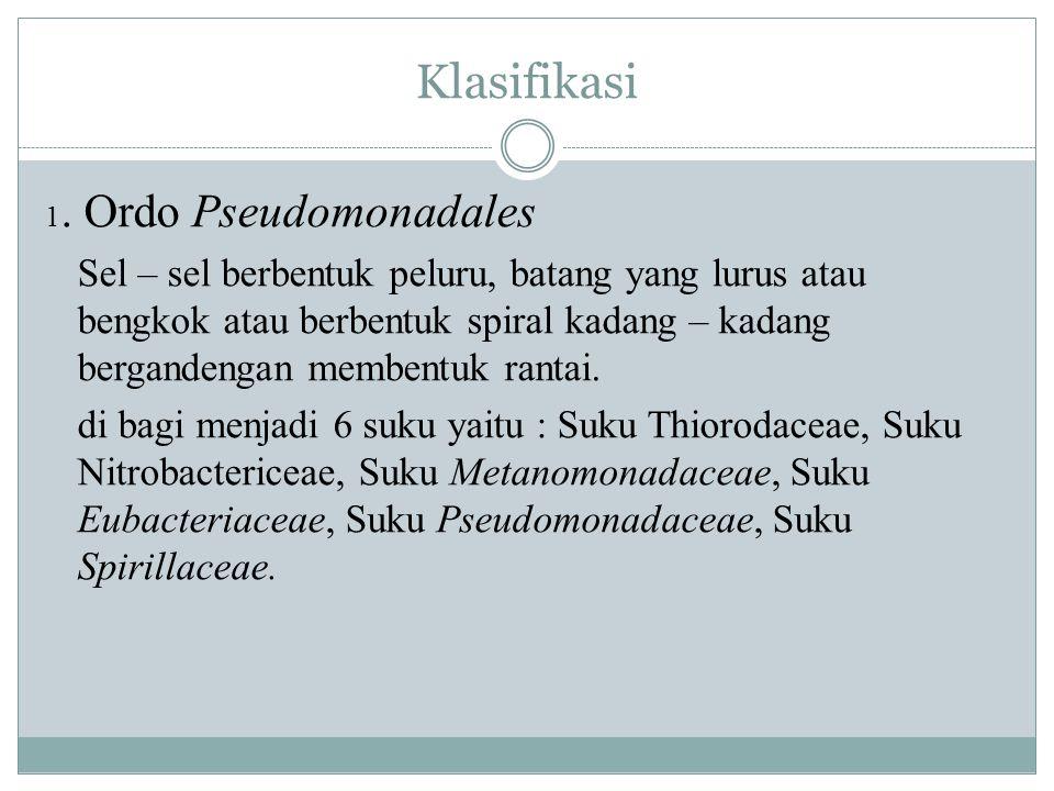 Klasifikasi 1. Ordo Pseudomonadales.