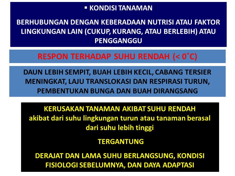 RESPON TERHADAP SUHU RENDAH (< 0˚C)
