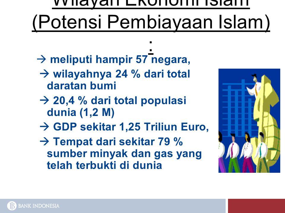 Wilayah Ekonomi Islam (Potensi Pembiayaan Islam) :