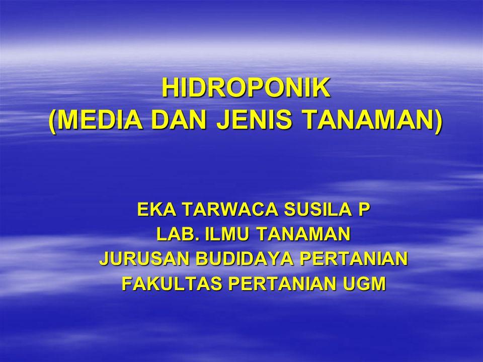 HIDROPONIK (MEDIA DAN JENIS TANAMAN)