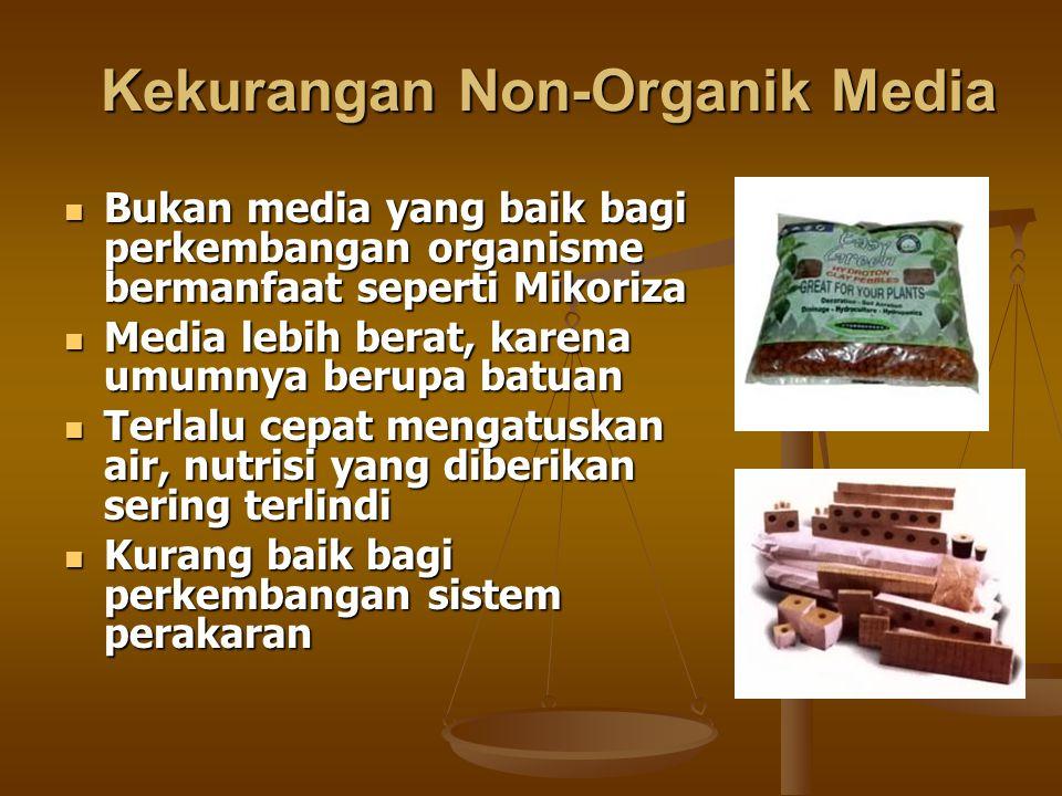 Kekurangan Non-Organik Media