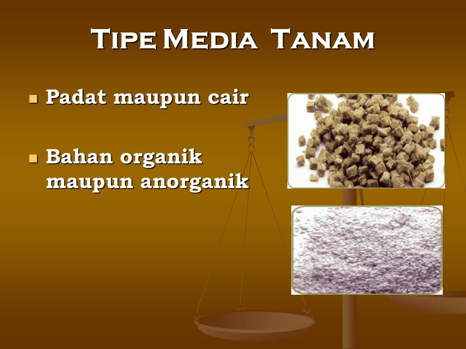 Tipe Media Tanam Padat maupun cair Bahan organik maupun anorganik