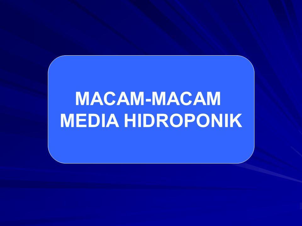 MACAM-MACAM MEDIA HIDROPONIK