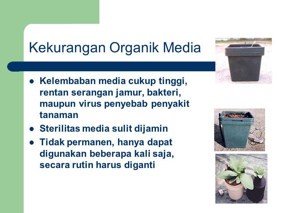 Kekurangan Organik Media