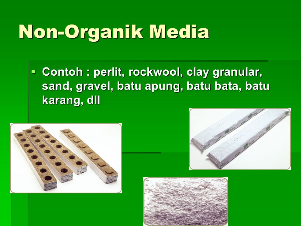 Non-Organik Media Contoh : perlit, rockwool, clay granular, sand, gravel, batu apung, batu bata, batu karang, dll.