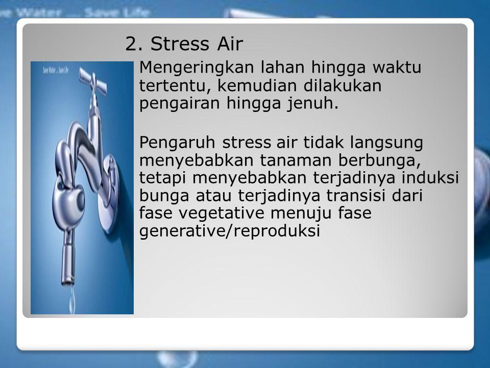 2. Stress Air Mengeringkan lahan hingga waktu tertentu, kemudian dilakukan pengairan hingga jenuh.