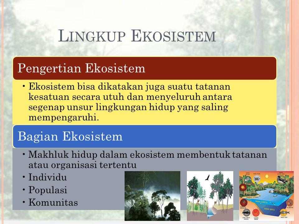 Lingkup Ekosistem Pengertian Ekosistem Bagian Ekosistem