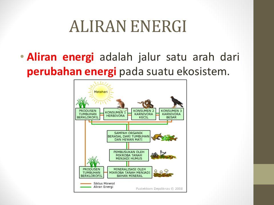 ALIRAN ENERGI Aliran energi adalah jalur satu arah dari perubahan energi pada suatu ekosistem.