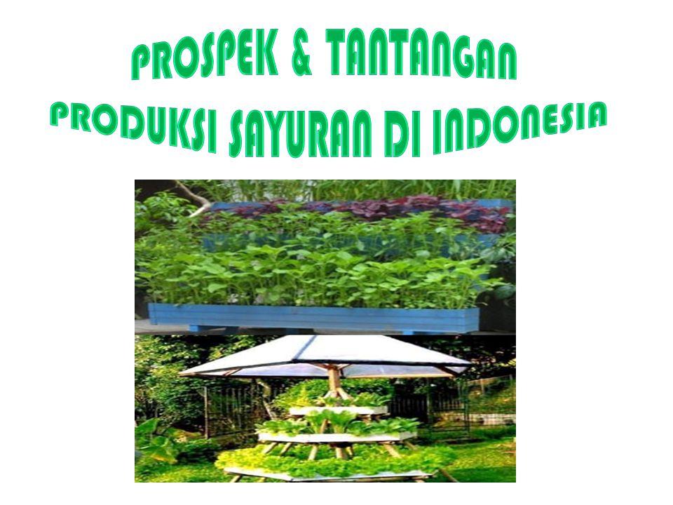 PRODUKSI SAYURAN DI INDONESIA