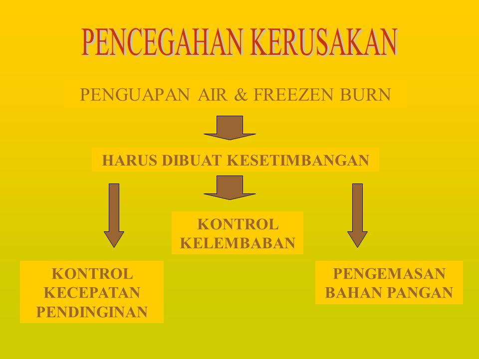 PENGUAPAN AIR & FREEZEN BURN