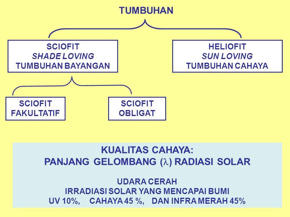 TUMBUHAN KUALITAS CAHAYA: PANJANG GELOMBANG () RADIASI SOLAR
