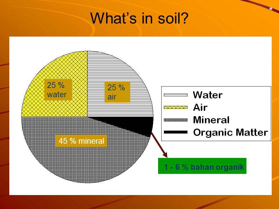 What's in soil * 1 - 6 % bahan organik 25 % water 25 % air