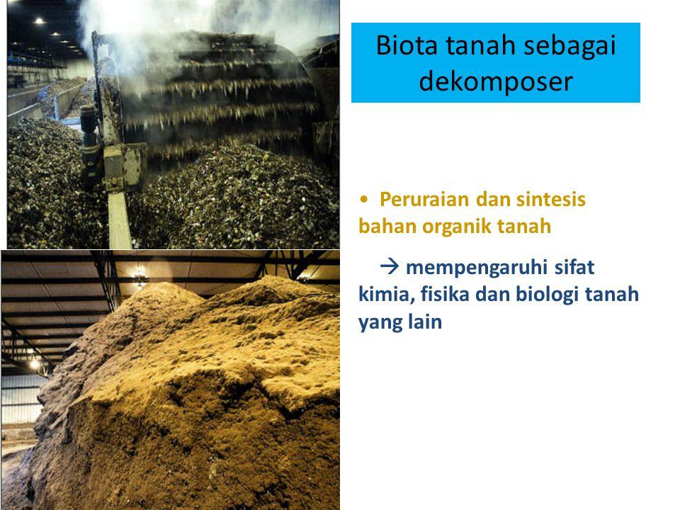 Biota tanah sebagai dekomposer