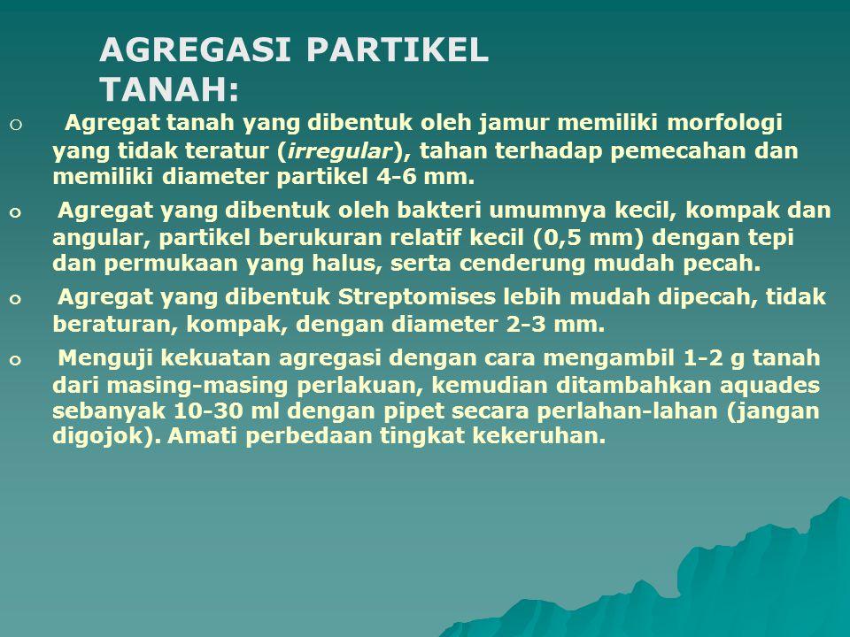 AGREGASI PARTIKEL TANAH: