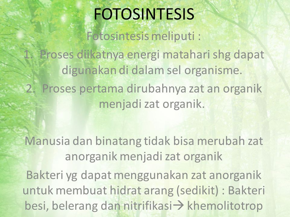 FOTOSINTESIS Fotosintesis meliputi :