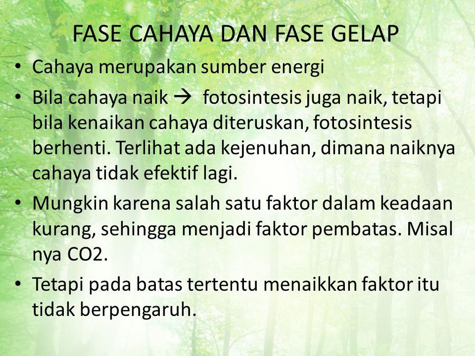FASE CAHAYA DAN FASE GELAP